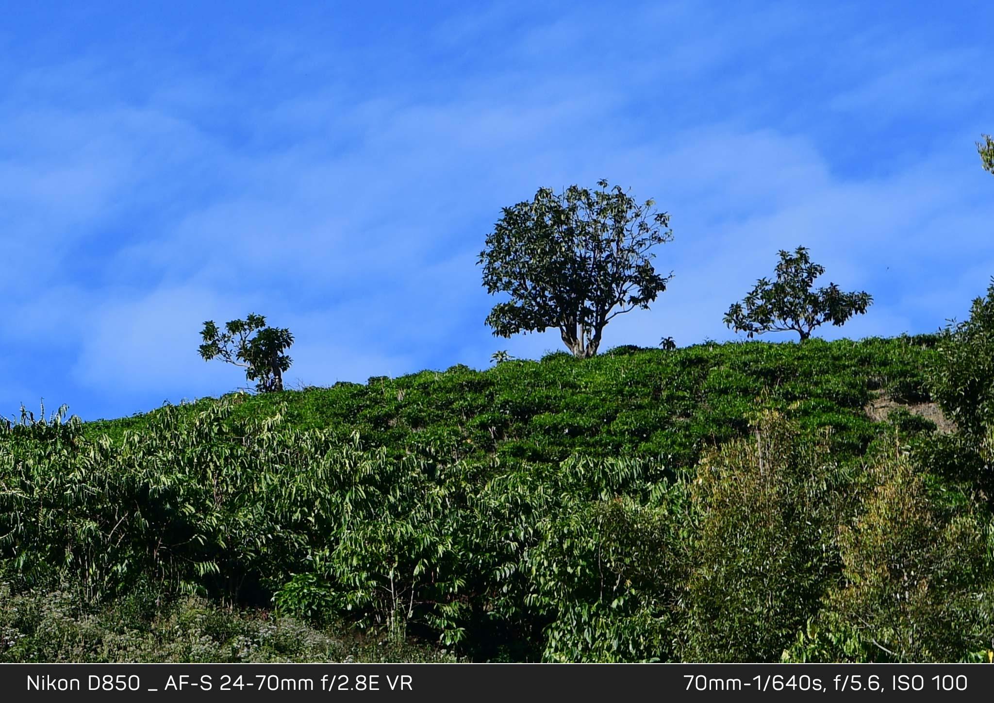 Đang tải Nikon-D850_chi-tiet_KH2_6360-Crop.jpg…