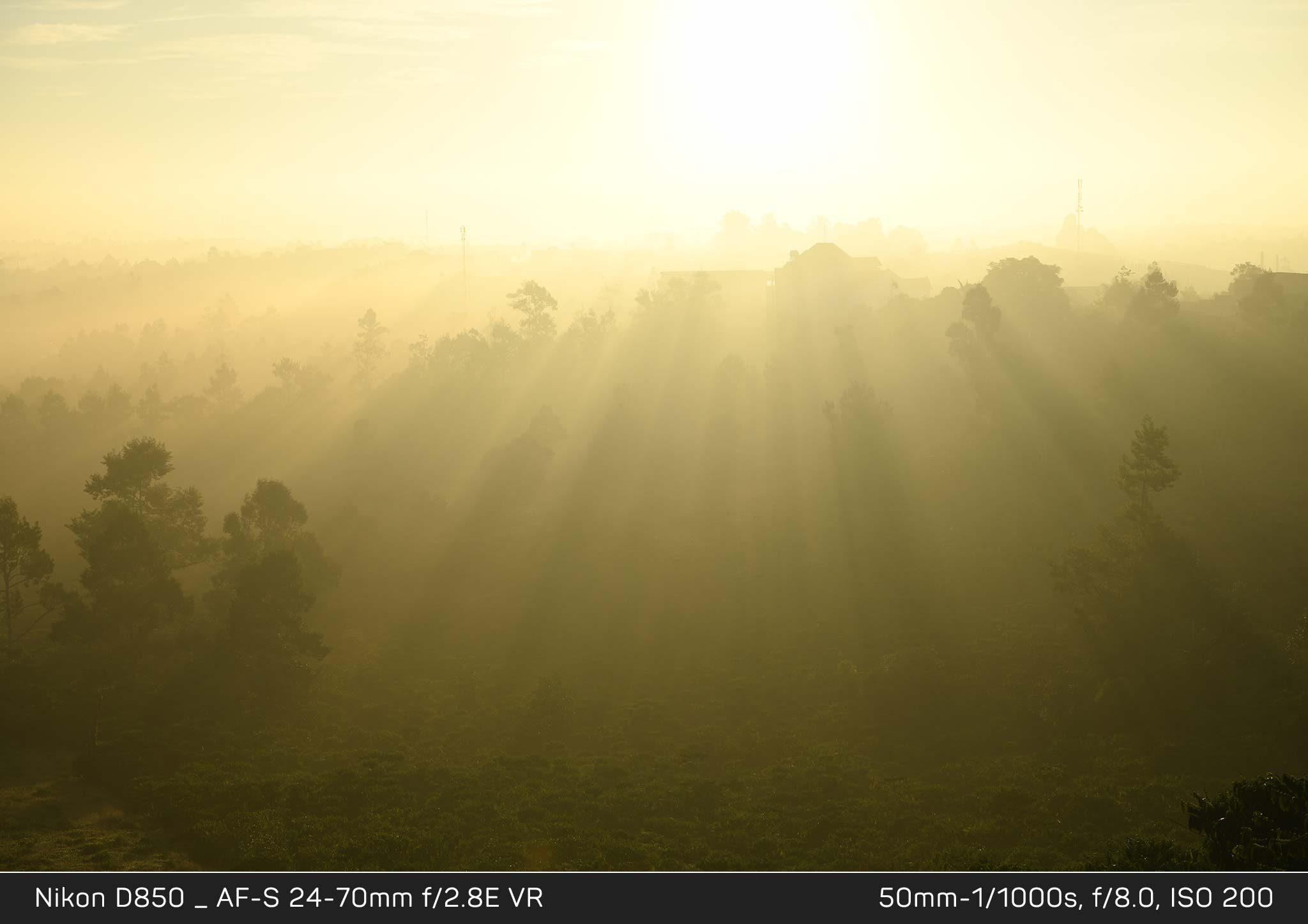 Đang tải Nikon-D850_nguoc-sang_KH2_6325.jpg…