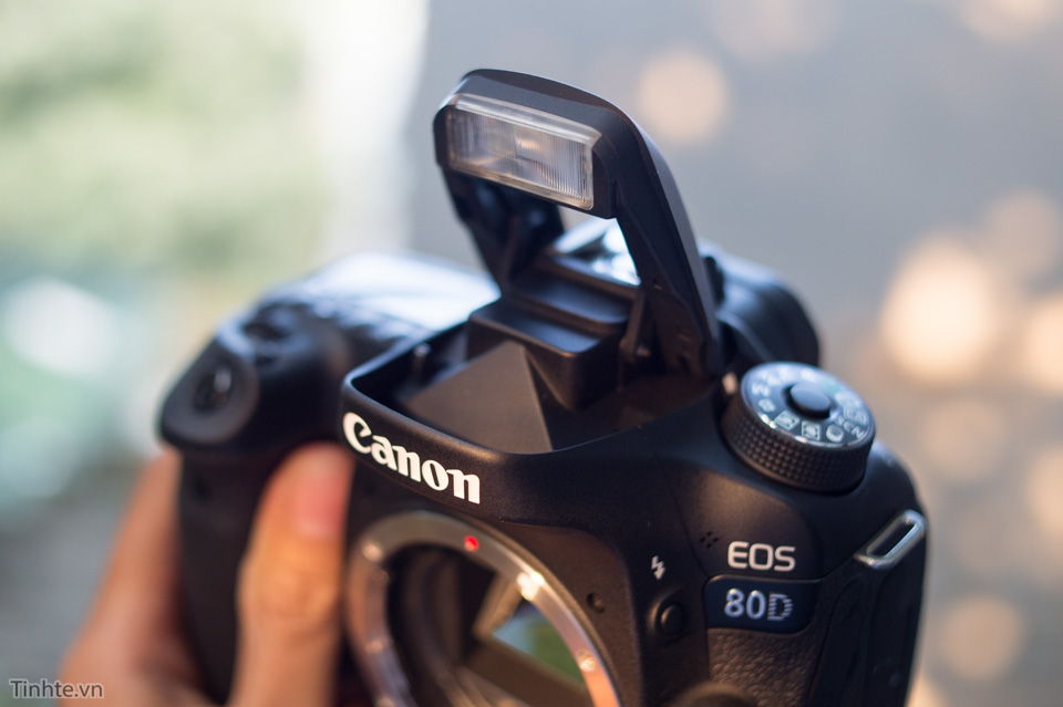 3639229_Canon_EOS_80D_tinhte_6