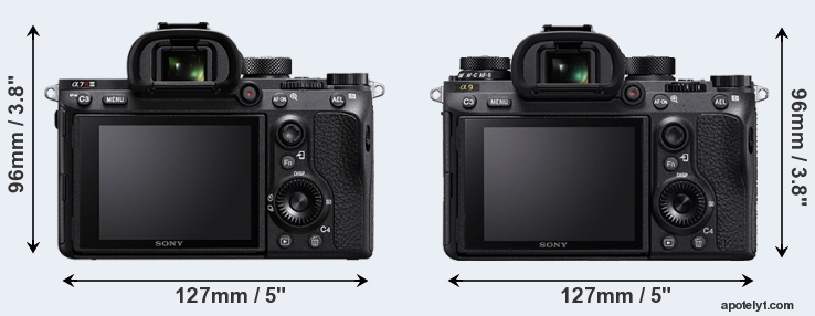 sony-a7r-iii-vs-sony-a9-rear-a