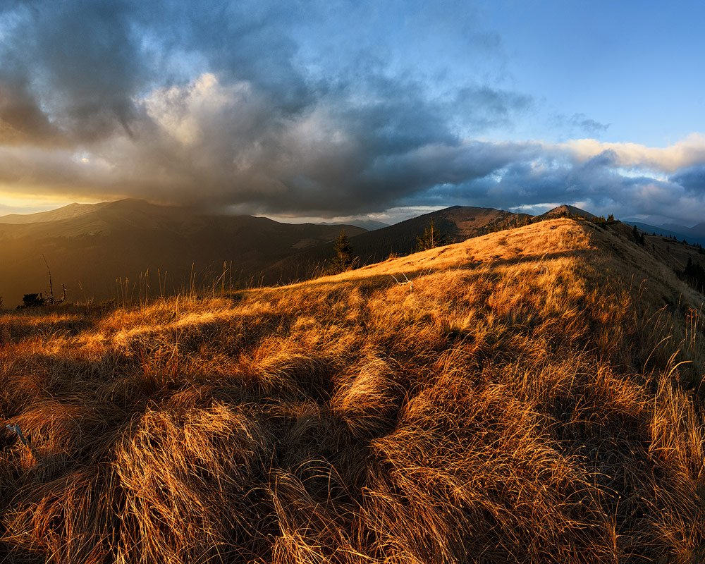 golden-hour-photography