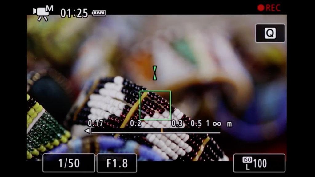 canon-eos-r-dual-pixel-mf-assist