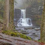 edi_waterfall_throught_the_trees