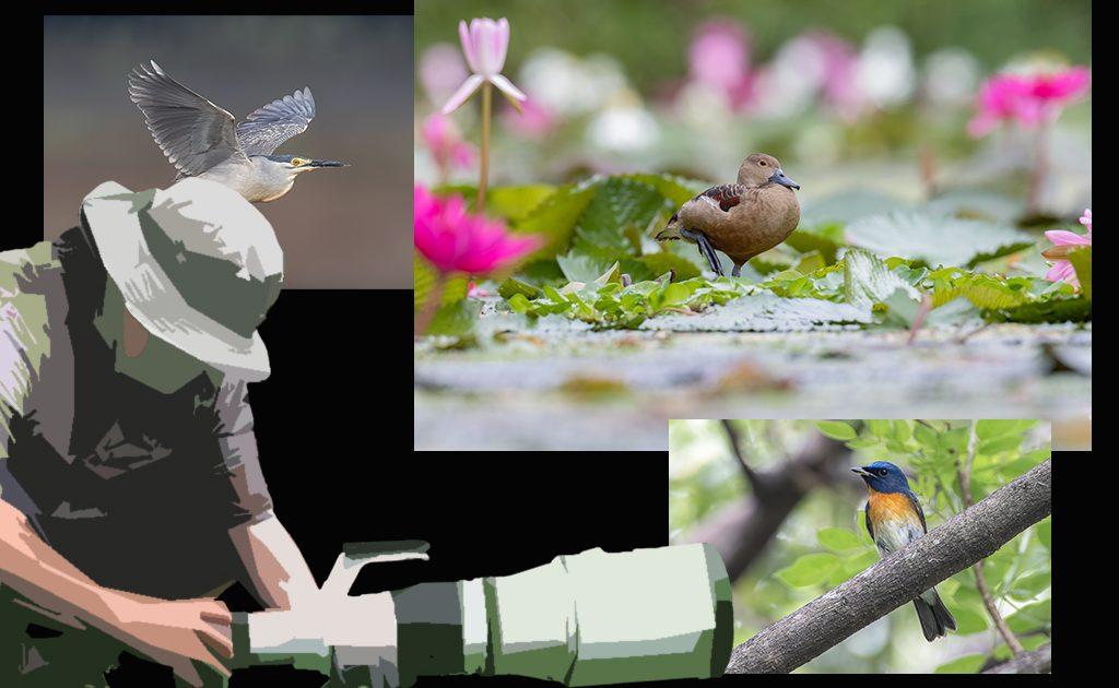bird-photography-angles_2089-01b