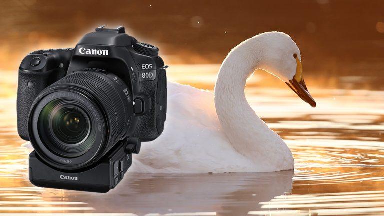 Đánh giá máy ảnh Canon 80D